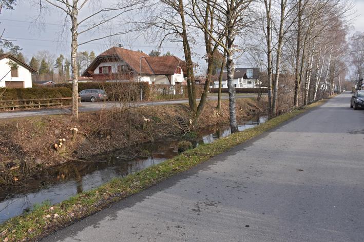 22 Holzarbeiten_Kanalweg.jpg
