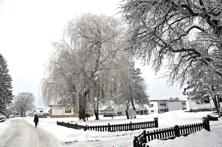 67 Winter.jpg